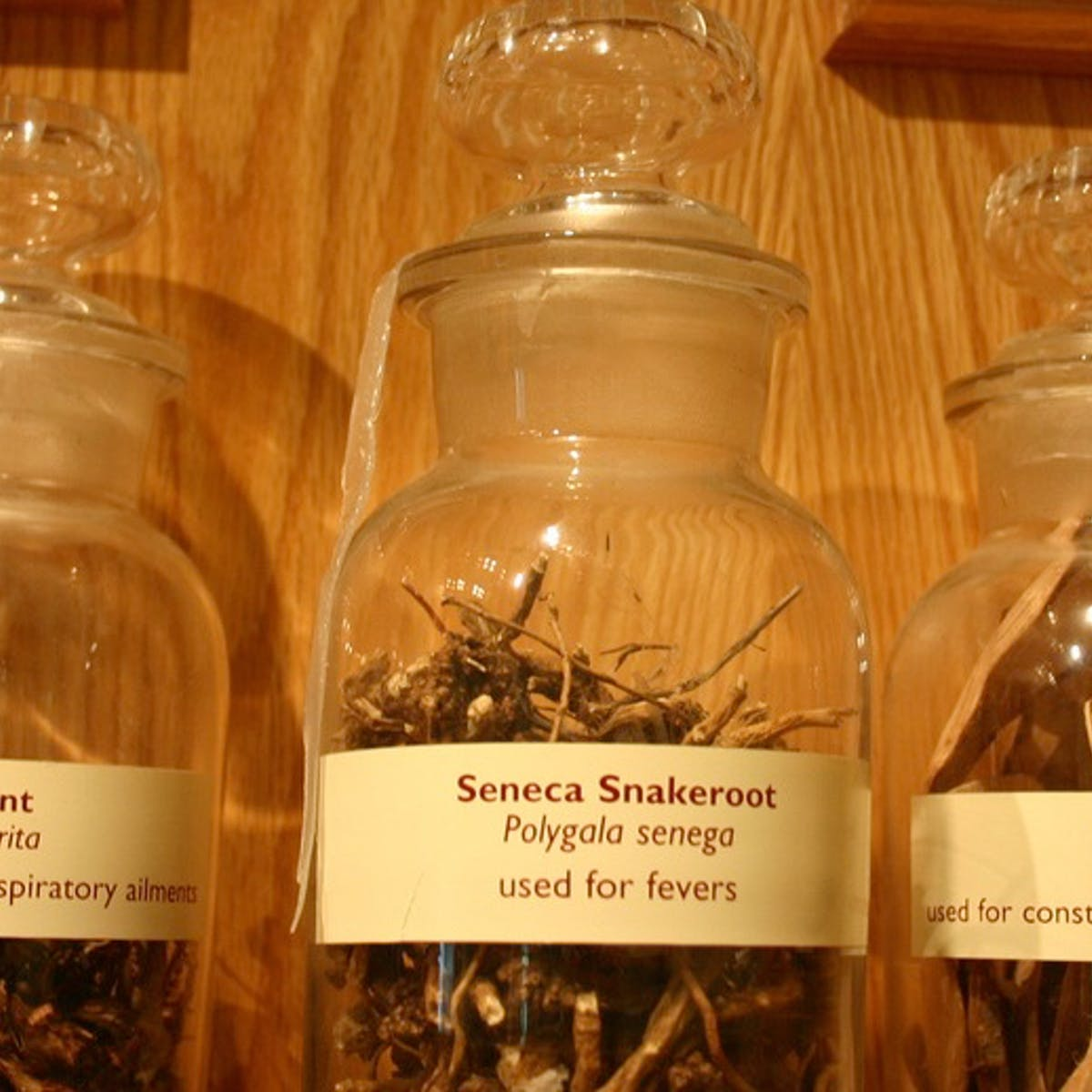 Herbal medicines – toxic side effects and drug interactions
