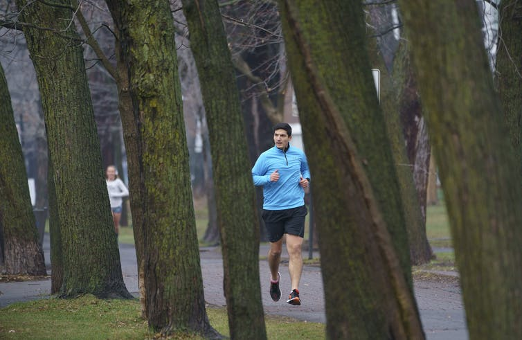 People running on a tree-lined path