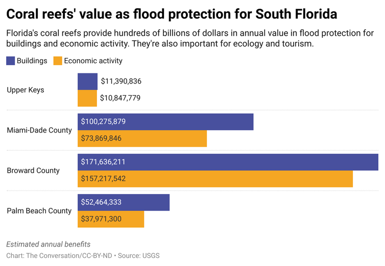 A chart comparing the estimated annual benefits that coral reefs provide for buildings and economic activity in different parts of South Florida.