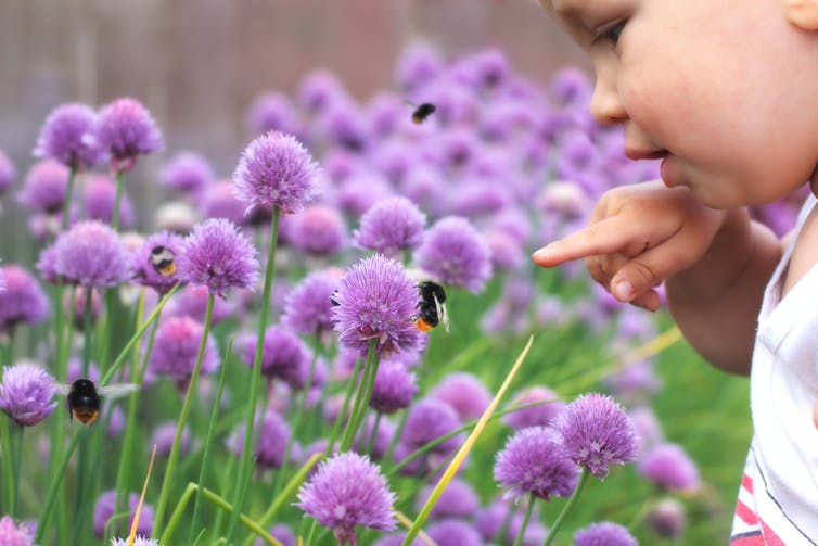 Little child points a finger at a bumblebee on a flower.