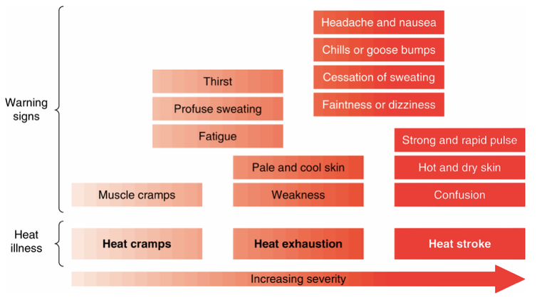 A graphic showing the impact of heat on performance and health