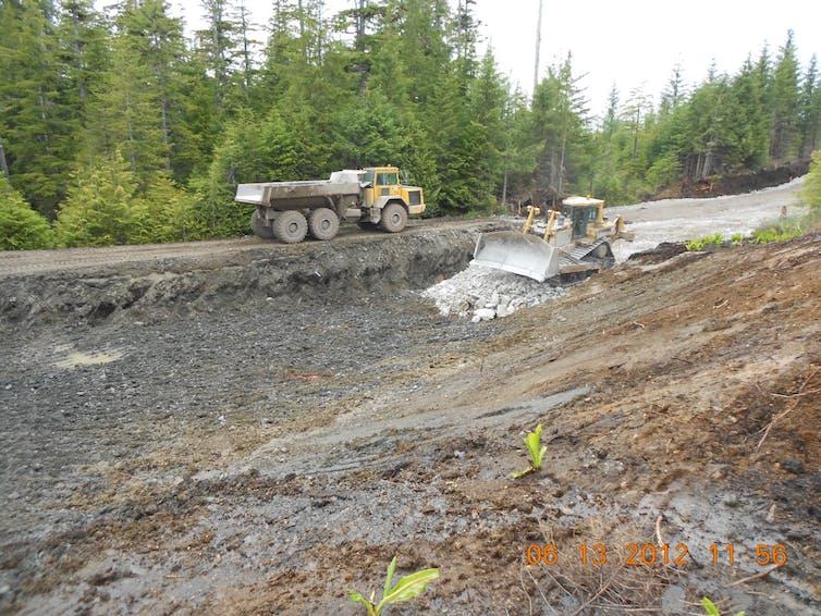 Bulldozers grade land next to a gravel logging road.