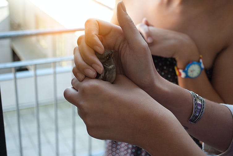A woman carefully holds a small bird in her hand