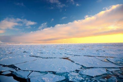 A vast expanse of sea ice.