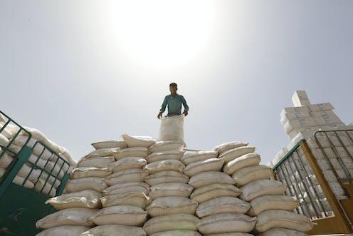 A humanitarian worker sorts food bags