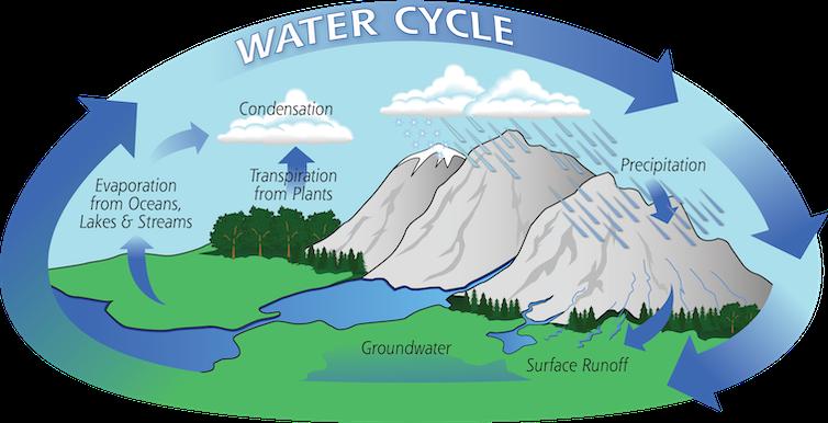 Uma ilustração que mostra como a água percorre a precipitação, escoamento, lençol freático, plantas, evaporação e condensação para cair novamente.
