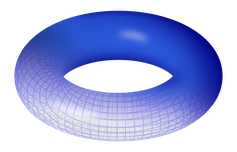 Torus diagram