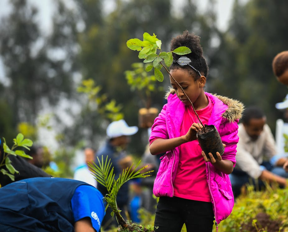 A girl holds a tree sapling and looks ready to plant it.