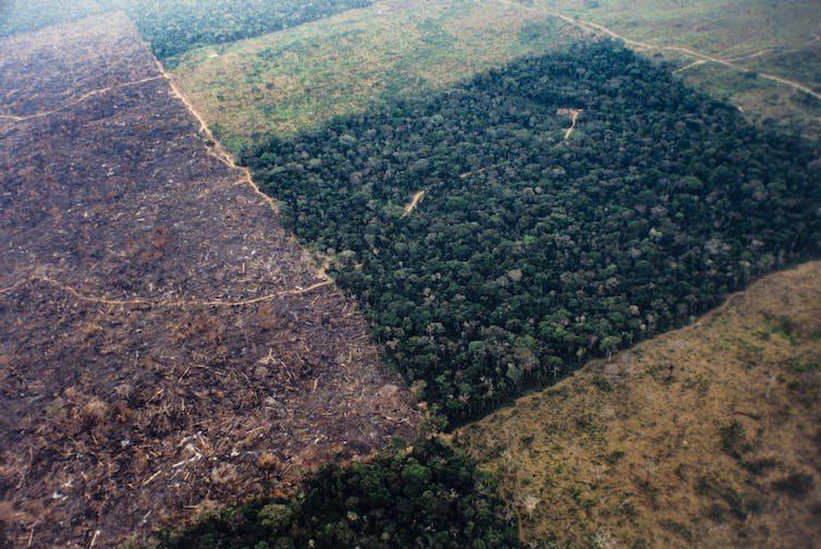 Aerial view of patchwork deforestation of rainforest.