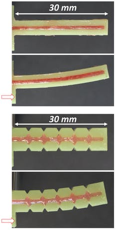 Image showing how 3D printed continuous and segmented fin rays bend.
