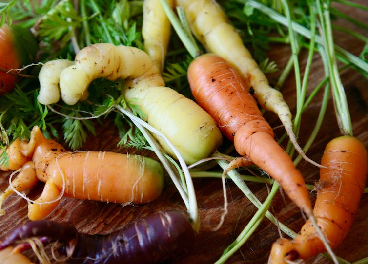 A selection of wonky vegetables.