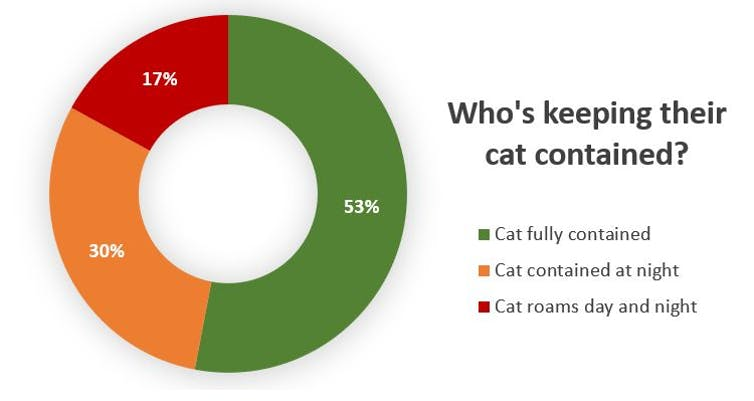Research reveals why pet owners keep their cats indoors – and it's not to protect wildlife