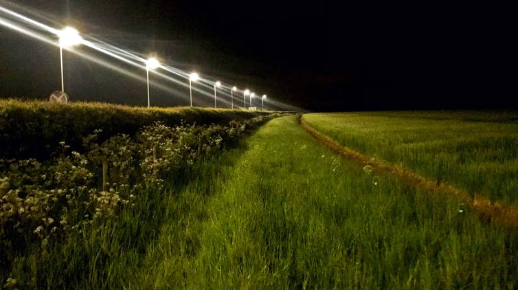 LED street lights at a ruralfield site