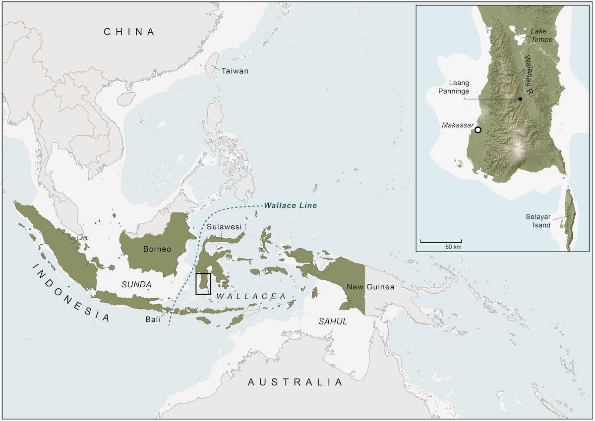 Sulawesi is the largest island in Wallacea, the zone of oceanic islands between the continental regions of Asia and Australia. White shaded areas represent landmasses exposed during periods of lower sea level in the Late Pleistocene. The Wallace Line is a major biogeographical boundary that marks the eastern extent of the distinctive plant and animal worlds of Asia. The Toalean cave site Leang Panninge (where Bessé' was found) is located in Sulawesi's southwestern peninsula (see inset panel). Toalean archaeological sites have only been found in a roughly 10,000 km² area of this peninsula, south of Lake Tempe. Kim Newman