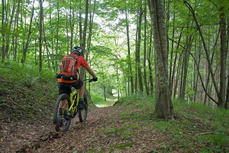 Man cycling on electric bike through woodland.