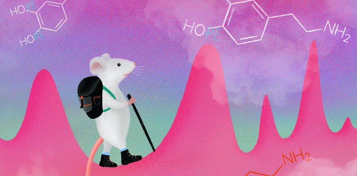 My colleagues and I recently found that we were able to train mice to voluntarily increase the size and frequency of seemingly random dopamine impulse