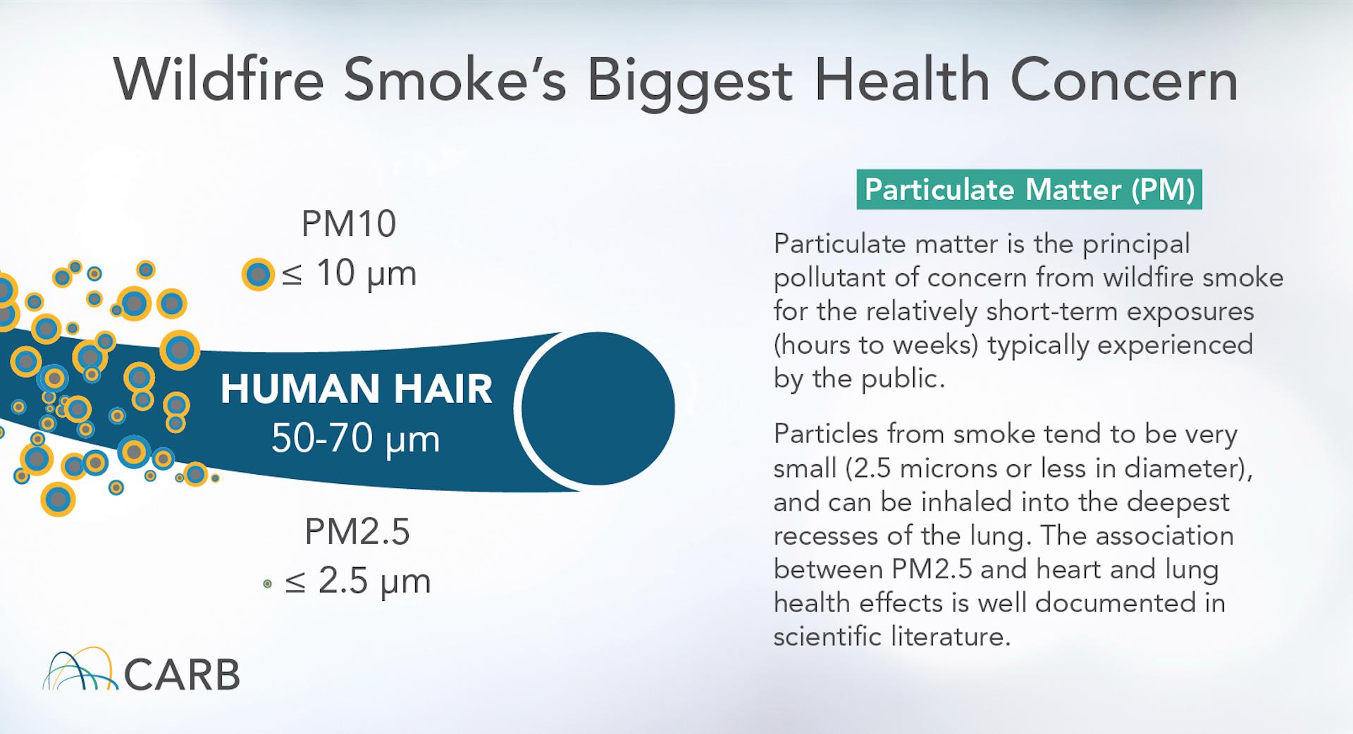 Partículas de fumaça de incêndio florestal incluem partículas de PM2,5 que são muito menores do que um fio de cabelo humano. California Air Resources Board