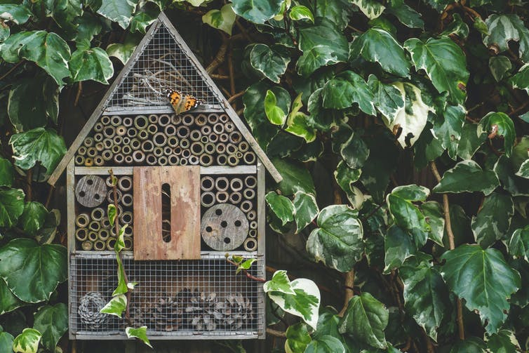 An insect hotel in garden with a butterfly on it