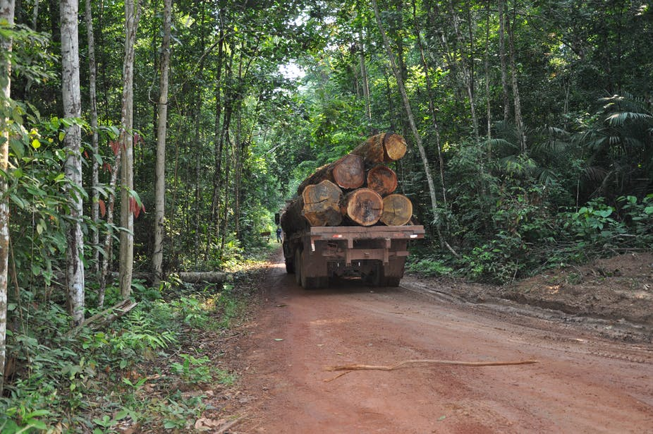A truck transports logs in the Amazon.