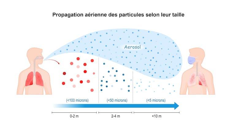 Selon leur taille, les aérosols potentiellement chargés de particules virales se diffusent plus ou moins loin