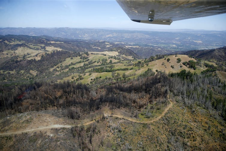A view from an airplane of hillsides, some dark from burning, other still green, with roads winding through them.