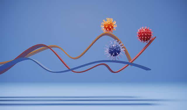 Three coronaviruses on different lines on a chart.
