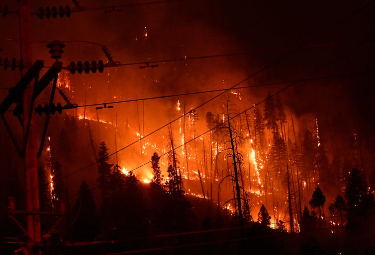 A Fire Burns The Trunks Of Trees On A Hillside With A Power Line In The Foreground.