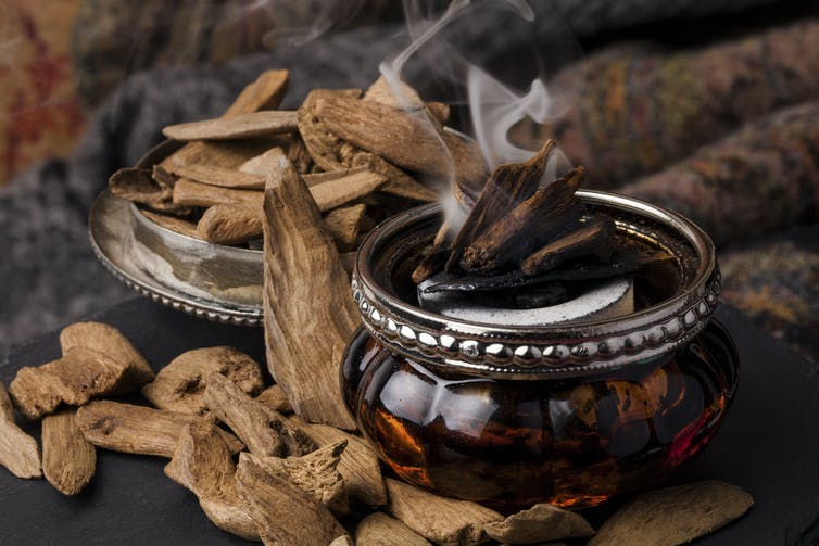 An incense burner surrounded by wooden chips.