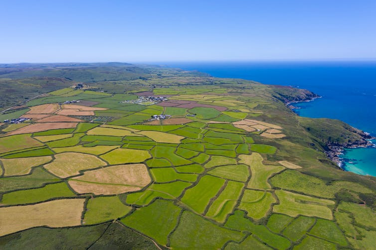 Aerial view of fields in Cornwall.