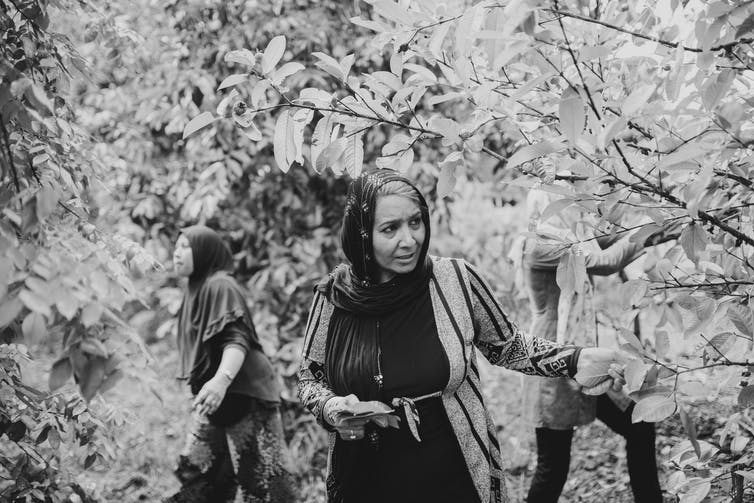 Black and white photo, three women surrounded by trees.