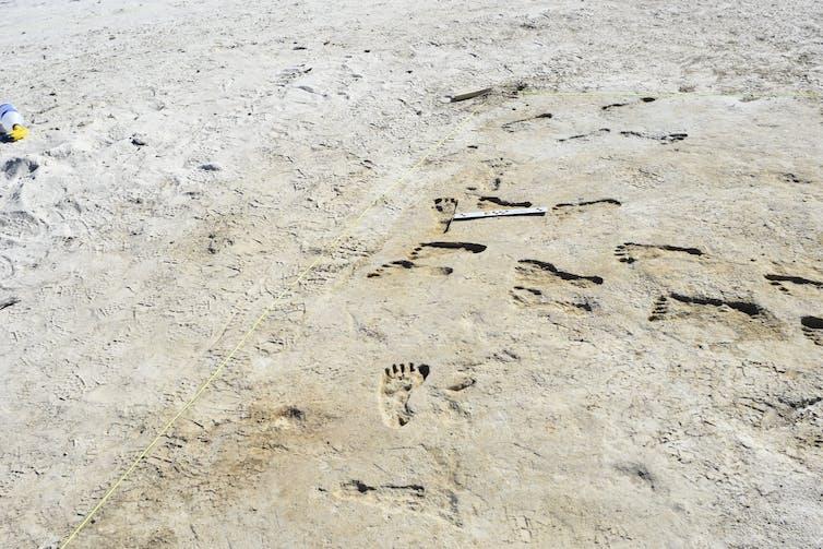 modern footprints bordering ancient ones.