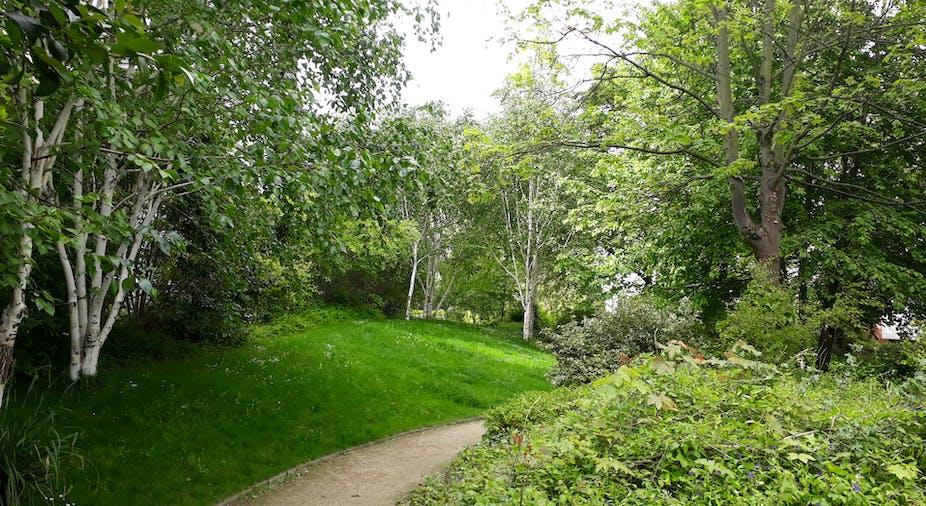 De quoi se compose exactement la « forêt urbaine » ?
