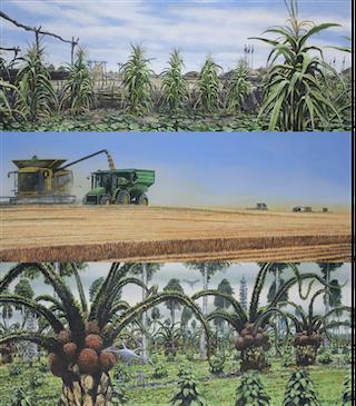 Un tríptico de la agricultura y los cambios en los cultivos a lo largo del tiempo debido al cambio climático