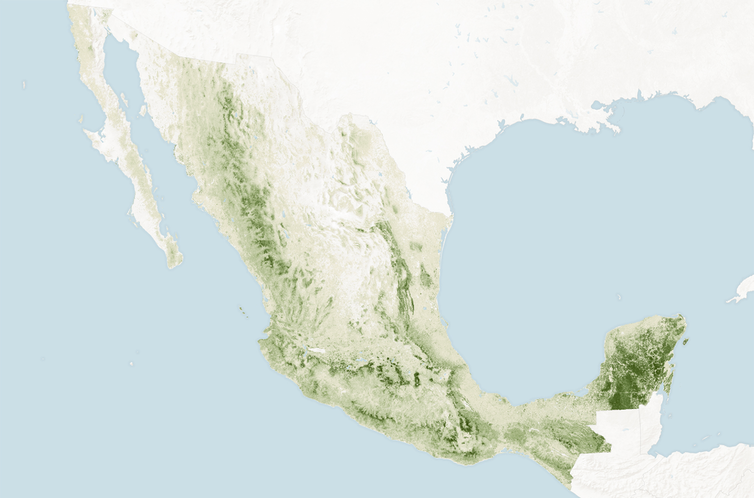 Map showing Mexico's forested areas in shades of green