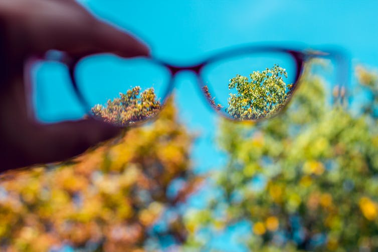 Glasses held out to focus on tree tops in the distance