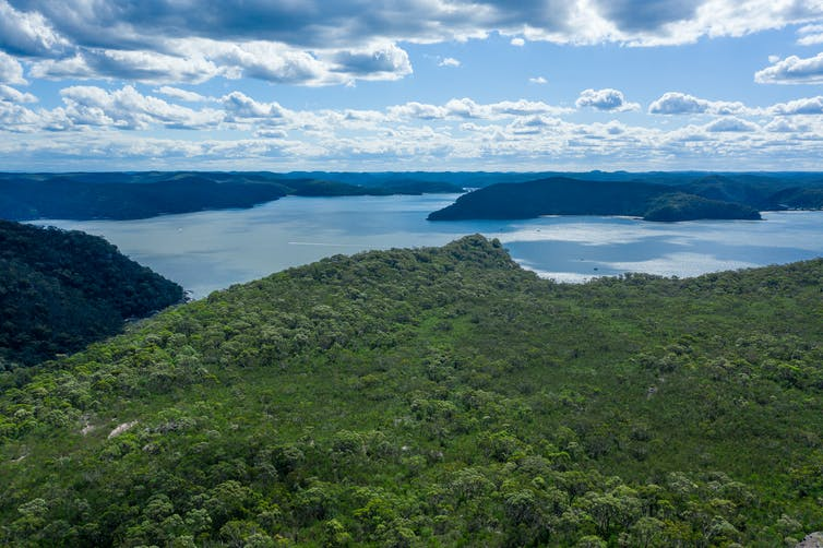 Aerial view of hills, forest and Hawkesbury River