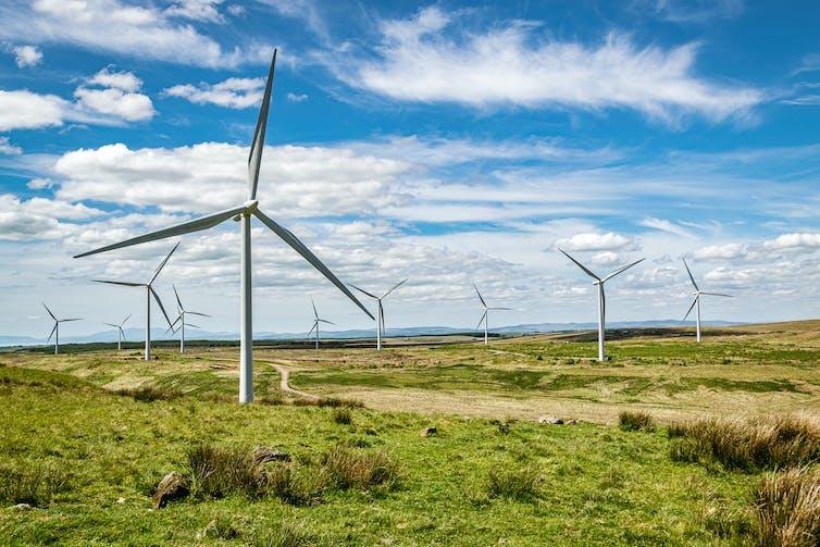 wind turbine on green grass