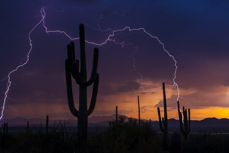 Lightning during a monsoon storm photo
