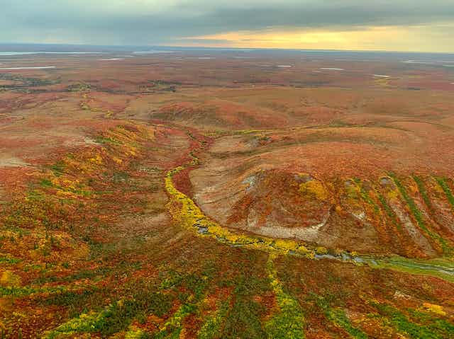 aerial view of tundra peatland