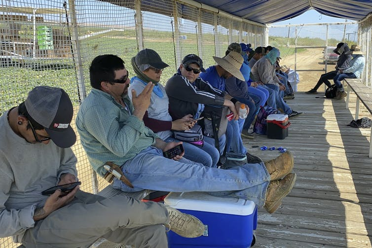 About a dozen farmworkers in long sleeves, jeans, hats and boots sit in the shade of a covered, open-air truck bed.