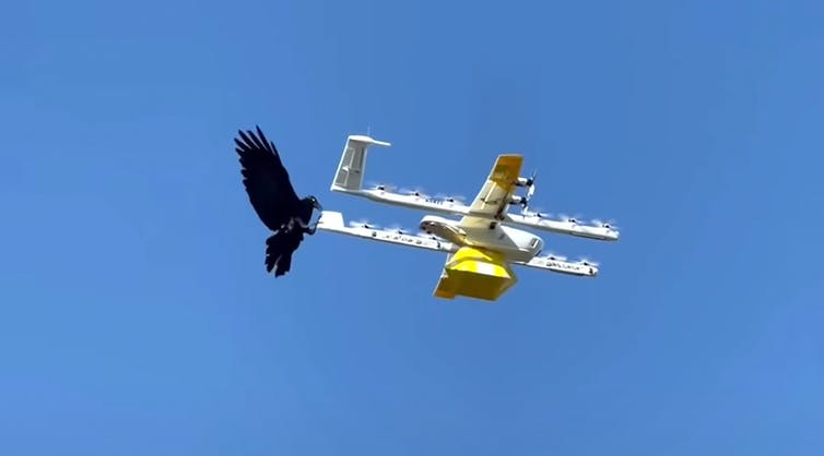Personalizing the skies: Drone delivery promises comfort and speed, but at a cost for workers and communities