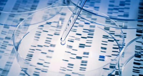 Australians need more protection against genetic discrimination: health experts