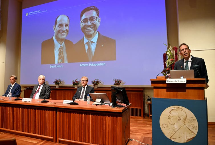 Large screen displaying the winners of the 2021 Nobel Prize in Physiology or Medicine