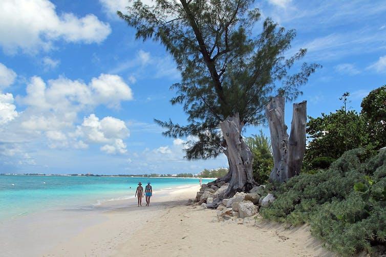 Deux personnes marchent sur une plage de sble blanc