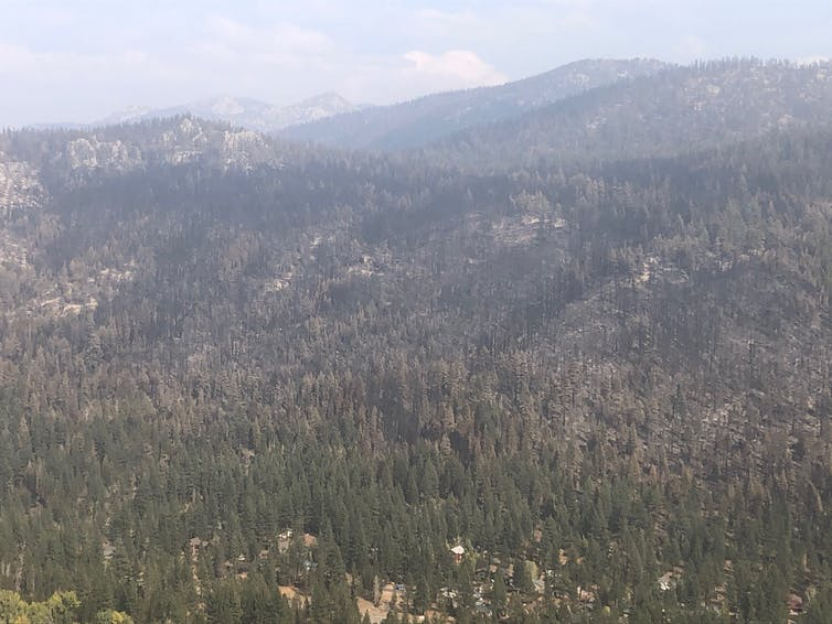 A smoky valley and evidence of a fire
