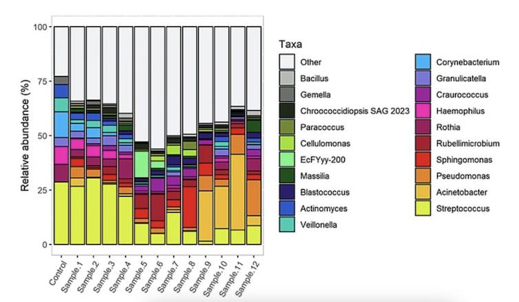 Dinámica da variación das comunidades microbianas ao longo de doce semanas. As barras representan a modificación do perfil microbiano ao longo do tempo. Satari et al.