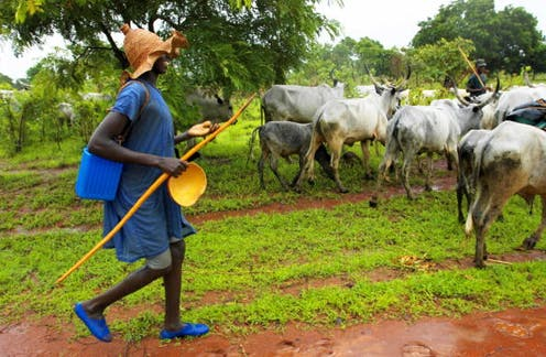 What an irrigation project reveals about farmer-herder conflict in northern Nigeria