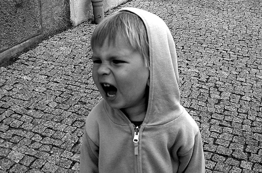 Neglecting Neuroscience Has Criminal >> Neglecting Neuroscience Has Criminal Consequences For Youth
