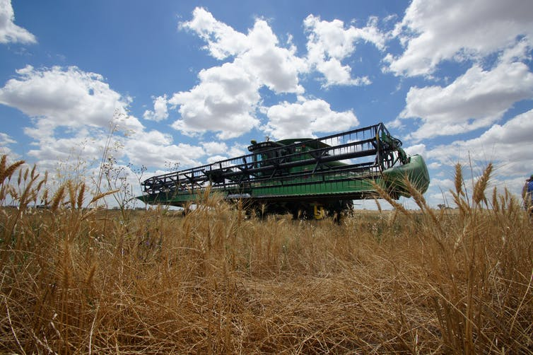Agriculture in Australia: growing more than our farming future
