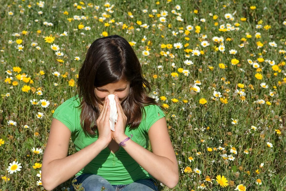 Explainer: what is hay fever and why do you have it?
